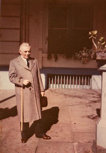 Friedman in color